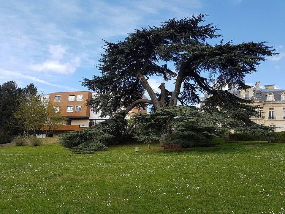 Photo de Hôpital Le Parc