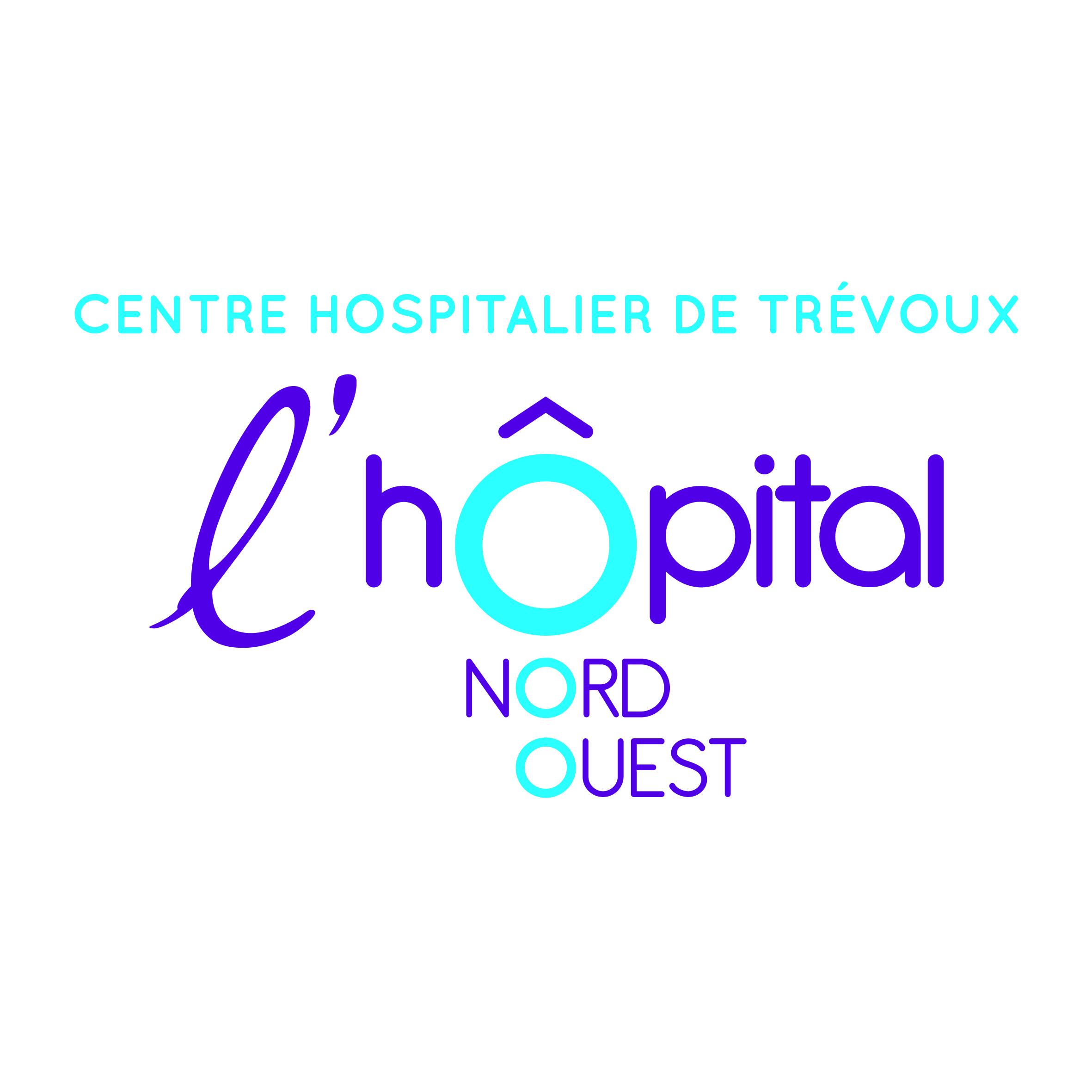offres d u0026 39 emploi centre hospitalier de tr u00e9voux  tr u00e9voux